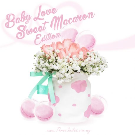 Baby Love Sweet Macaron Edition